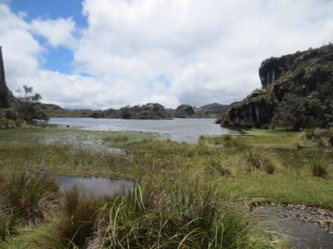 The mysterious páramo of Cajas National Park